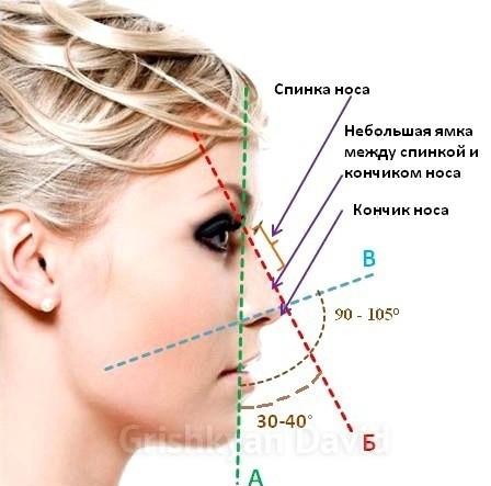 Идеальный нос ринопластики