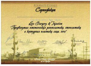 курс Live surgery and Injection Russia,St. Petersburg, октябрь 2014